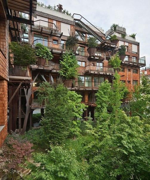 Hus i træerne   samstroi   byggeri, design, arkitektur.